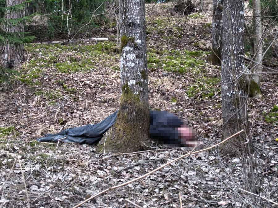 Kun urbaani löytöretkeilijä löytää kuolleen